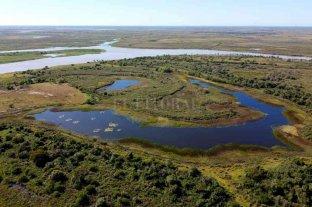 """""""La Rinconada"""": primera reserva natural de la costa santafesina Un espacio mágico en la isla"""