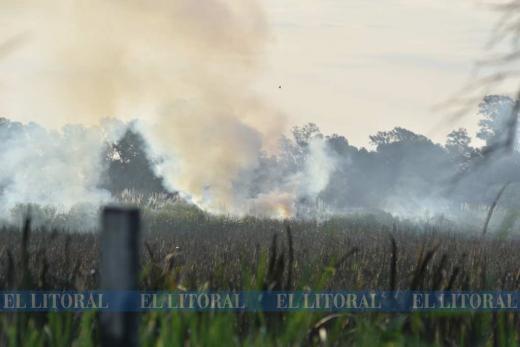 Incendio en el reservorio, entre Derqui y Ruperto Godoy, al oeste de la ciudad