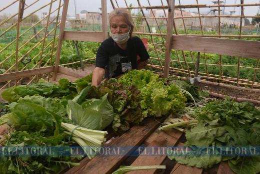 Rosario, recibe reconocimiento internacional por su política de huerta urbana