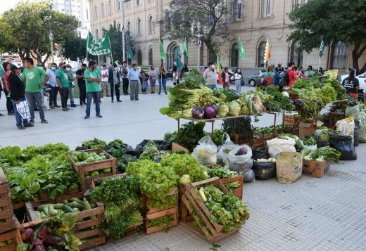 """""""Verdurazo"""" frente a casa de Gobierno"""