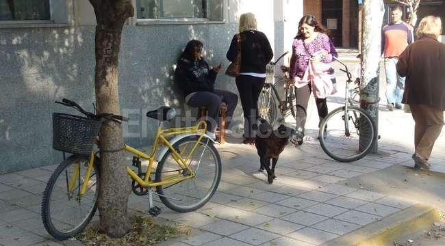 Para ordenar la ciudad y brindar un servicio a los ciclistas, ya no más la bici atada en cualquier parte... <strong>Foto:</strong> Archivo El Litoral
