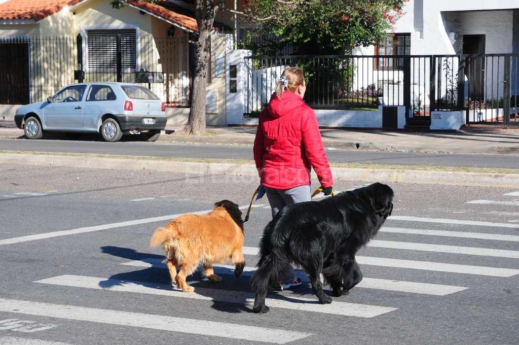 Relax para todos. La Costanera santafesina es uno de los espacios públicos más elegidos para salir a caminar. Es que la laguna Setúbal garantiza la relajación que toda persona necesita para llevar una vida saludable. En ese estilo de vida los animales están incluidos, de ahí es que por la Costanera se vean muchos paseadores de perros. Flavio Raina