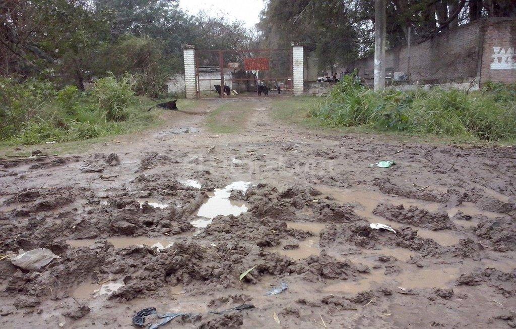 Desde el asfalto hasta el acceso hay 100 metros de calle de tierra. Gentileza Sociedad Protectora de Animales