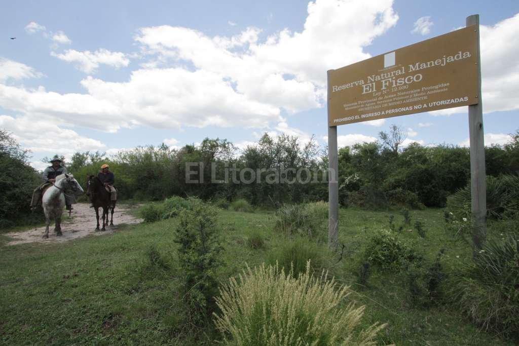 Liberaron el Aguará Guazú gato osito melero y cardinales en la reserva natural El Fisco ubicado 15 kilometros al norte de San Cristobal. Mauricio Garín