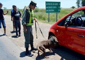 Corrientes: secuestraron m�s de 87 kilos de marihuana ocultos en un auto