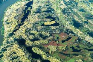 """Declaran """"sitio Ramsar"""" a los humedales del Delta del Paran�"""