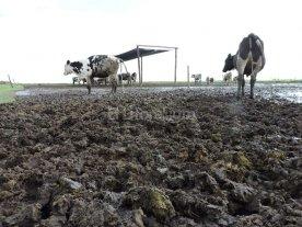Ruralistas piden que la provincia tome deuda por u$s 330 millones