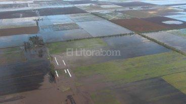 Emergencia h�drica: el 80 % de la zona tambera est� bajo agua