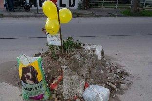 Con humor, piden que retiren la basura en Mariano Comas