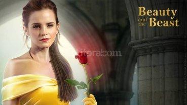 Mir� el trailer de la Bella y la Bestia
