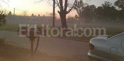 """""""Humo t�xico"""" en Pe�aloza Norte"""