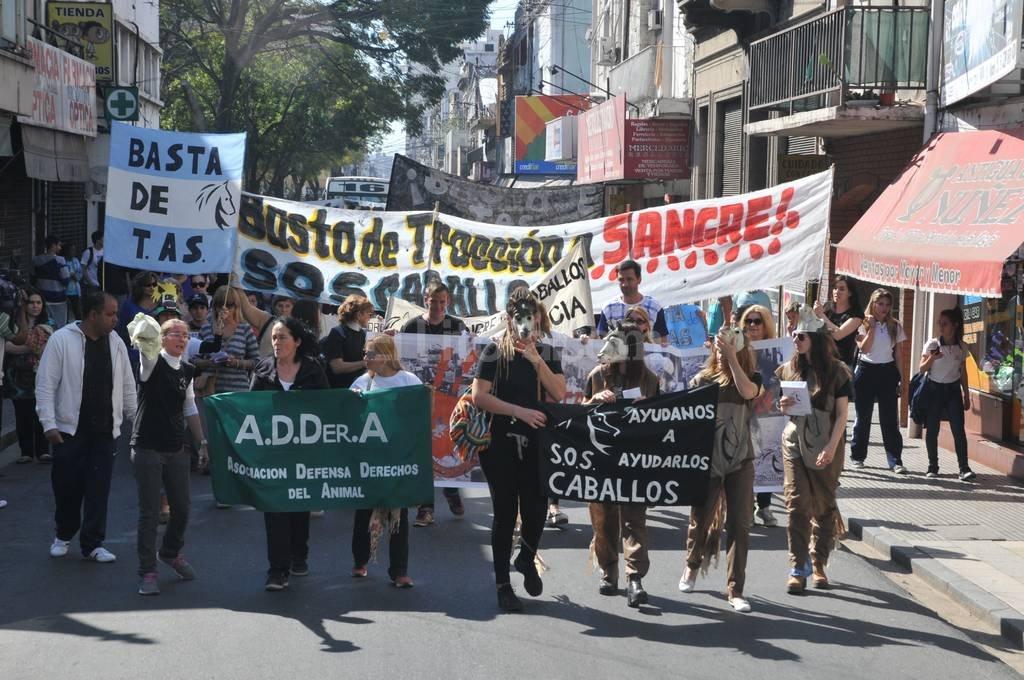 Como en otras ocasiones, la marcha convocó a un nutrido grupo de proteccionistas. <strong>Foto:</strong> Luis Cetraro