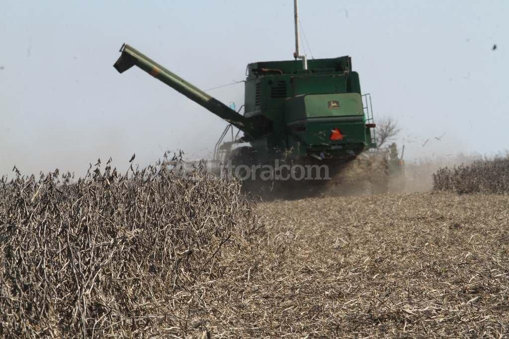 La liquidaci�n de soja por la reducci�n de retenciones fue uno de los principales impulsores de la econom�a. Foto:Mauricio Garin