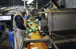 Una ley para proteger las fuentes de producci�n y trabajo