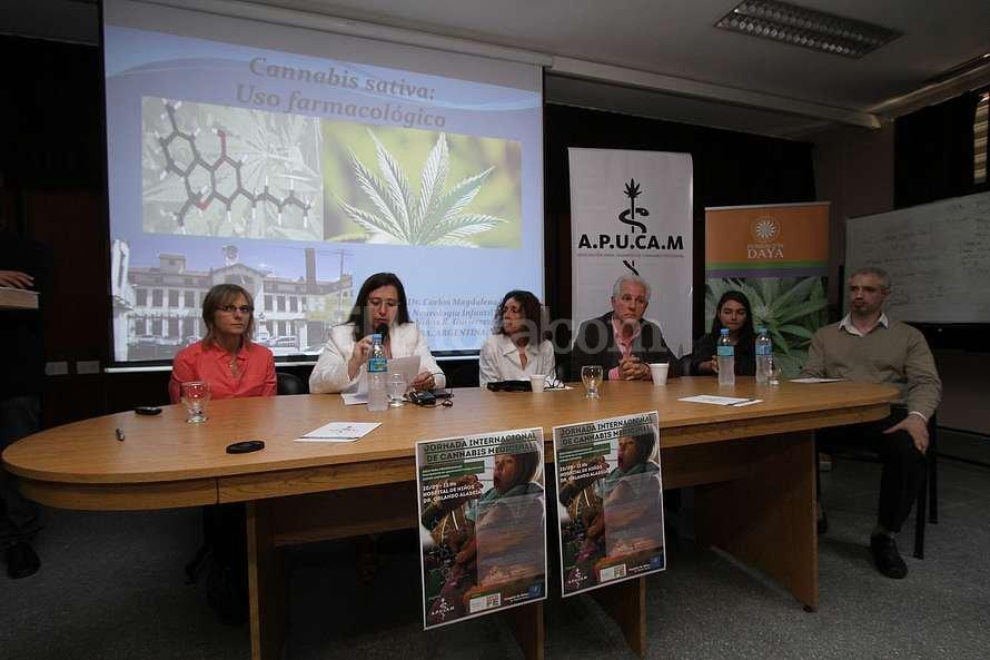 el-saber-del-cannabis-lo-tienen-los-pacientes-no-los-médicos