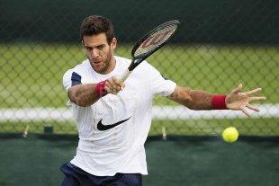 Del Potro super� a un rival directo de la Copa Davis