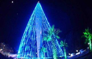El árbol de Navidad más alto del país está en Córdoba