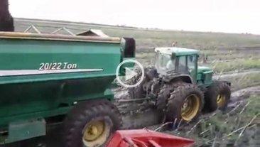 Video: así es la trilla de girasol luego del temporal