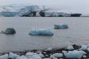 Alerta por los efectos del cambio climático en la Antártida