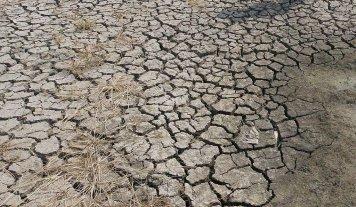 2016 fue el año más cálido desde que se toman registros, en 1880