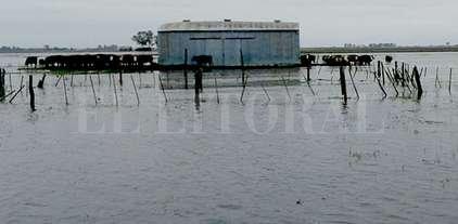 Primeros 500 millones para afrontar los efectos de las lluvias -  -