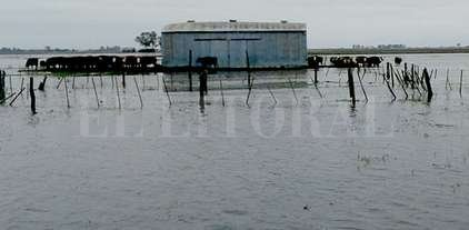 Primeros 500 millones para afrontar los efectos de las lluvias
