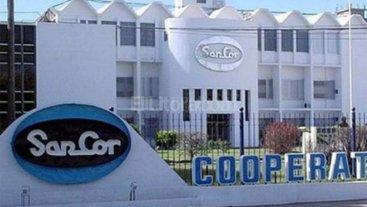 """Los productores de leche advierten que la situación de SanCor """"es insostenible"""""""