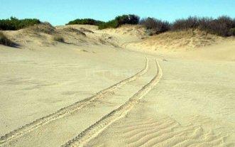 Una mujer murió tras perderse en los médanos en Mar Azul