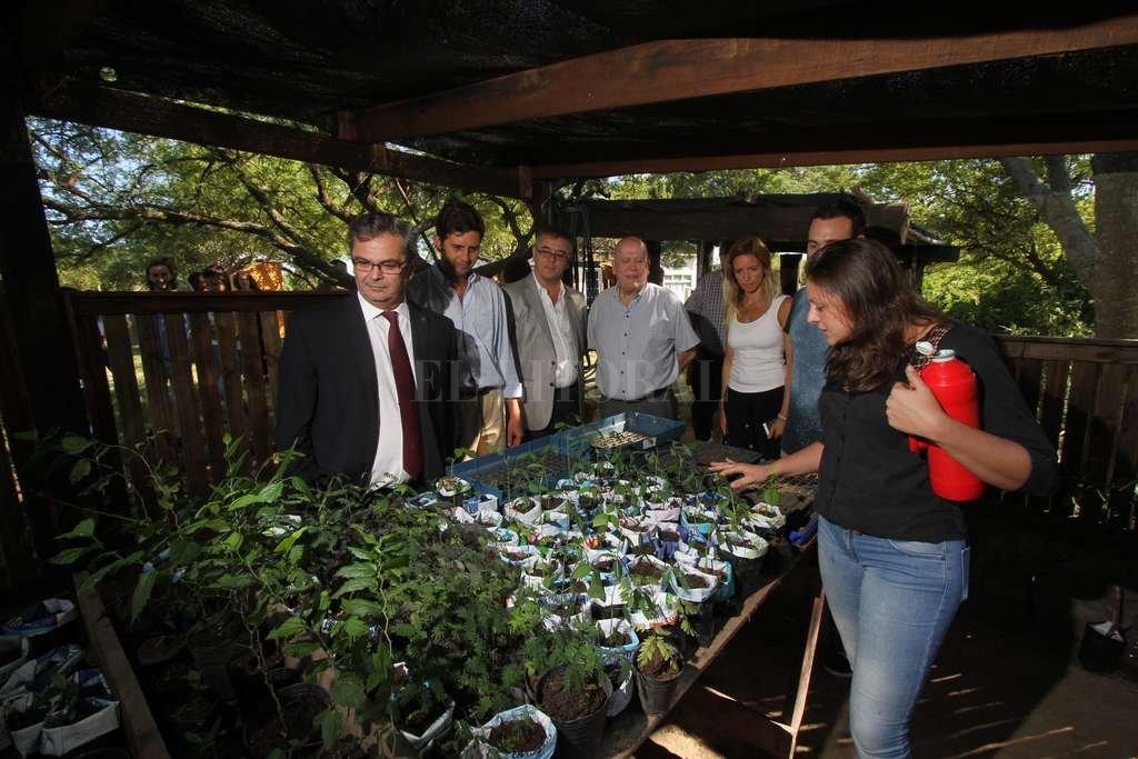 Irigoyen (UNL), Tabares (Fundación Hábitat) y Speranza (Medio Ambiente) visitaron el vivero de plantas y árboles nativos de la reserva. Crédito: Mauricio Garín