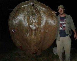 Pescaron una raya de 150 kilos