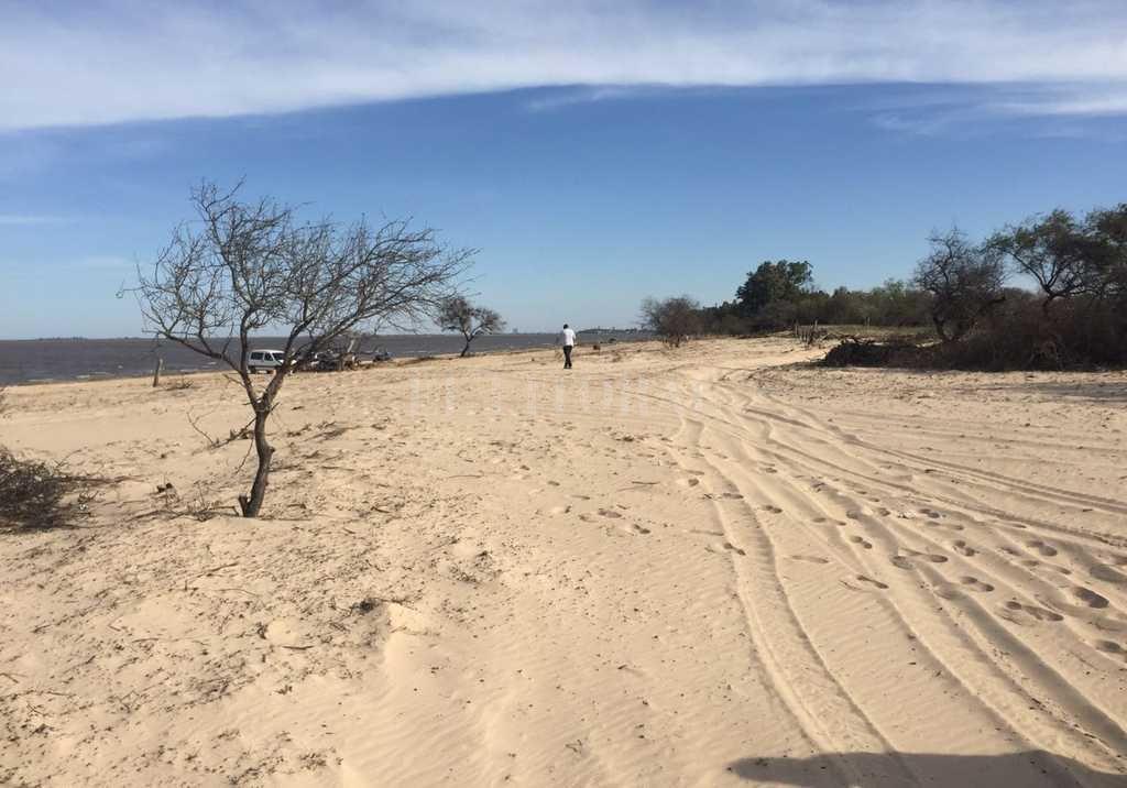 Arenal. Con el río bajo, la playa dejó en evidencia la presencia de residuos y ramas que pretenden quitar para el disfrute de todos. Crédito: Gentileza