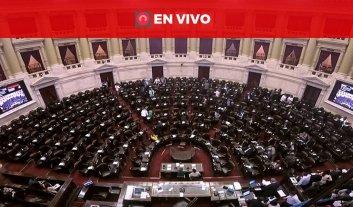 En vivo: Diputados trata el desafuero a Julio De Vido