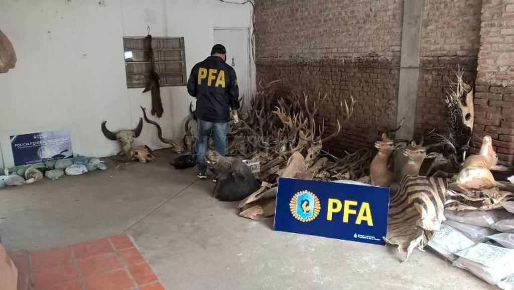 <strong>Foto:</strong> Prensa Ministerio de Seguridad de la Nación