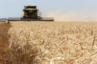 Sembradoras, cosechadoras y equipos de aplicación, presentaron una semana a puro ritmo