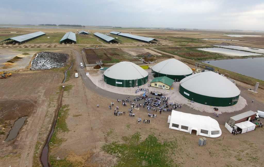 Monumental. El establecimiento Carmen cuenta con 10.000 hectáreas en producción cerca de Venado Tuerto. <strong>Foto:</strong> Transmedia VT