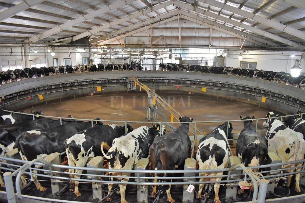 Mega tambo. Planta de biogás. Crédito: Campolitoral