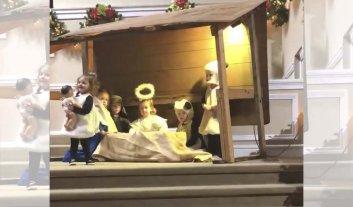 Oveja se roba al Niño Dios