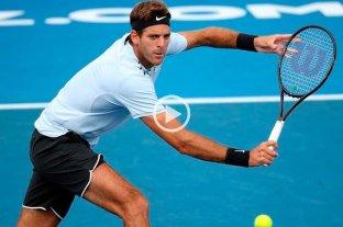 Del Potro perdió la final del ATP de Auckland