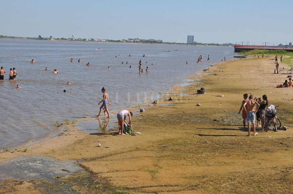 Las palometas buscan las aguas calmas, templadas y poco profundas. Cuando hace calor, su nivel de actividad se intensifica. Luis Cetraro