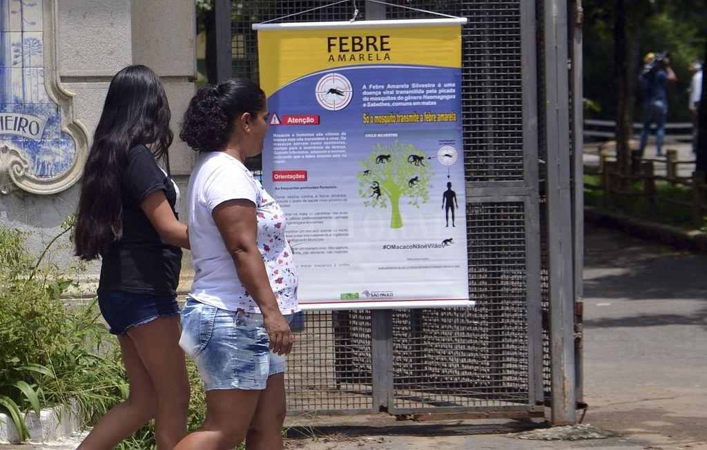 Alerta por fiebre amarilla en estado de Sao Paulo — OMS