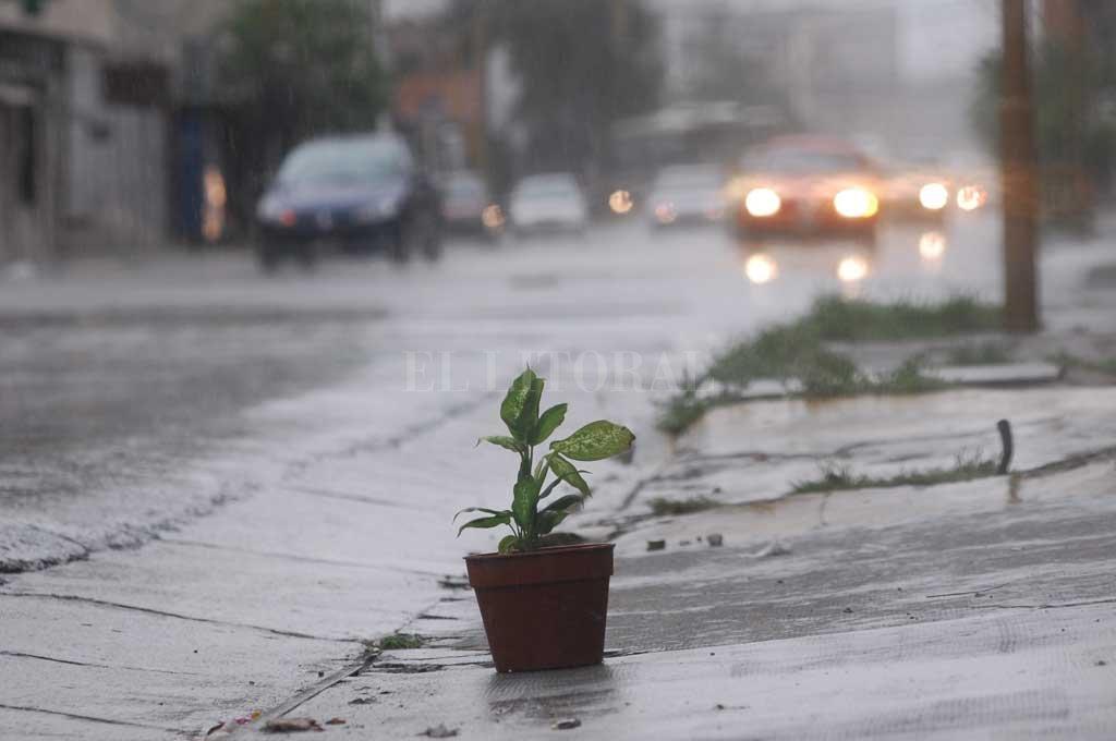Domingo con abrigo: llegó la lluvia y bajó la temperatura