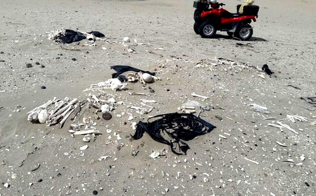 Paseaban por la costa y encontraron 20 esqueletos humanos