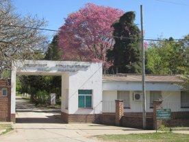 El debate por la legalización del aborto: ¿qué pasa en los hospitales de Santa Fe?