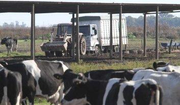 Contratos lácteos: de eso no se habla
