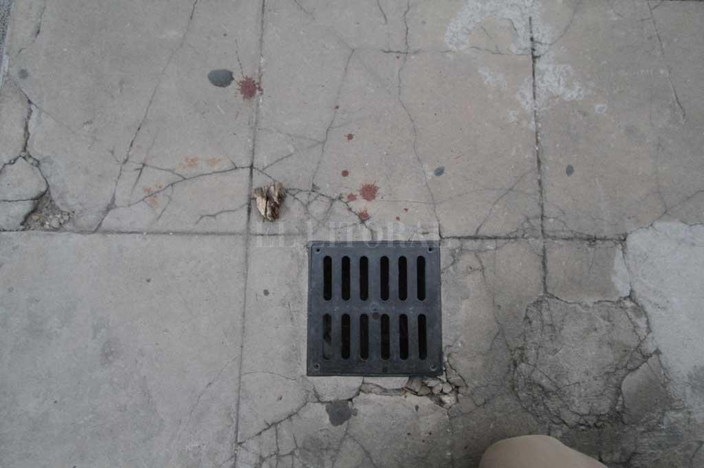 Este jueves por la mañana se podían ver rastros de sangre en la zona donde se produjo el ataque al guardia de la GSI <strong>Foto:</strong> Mauricio Garín