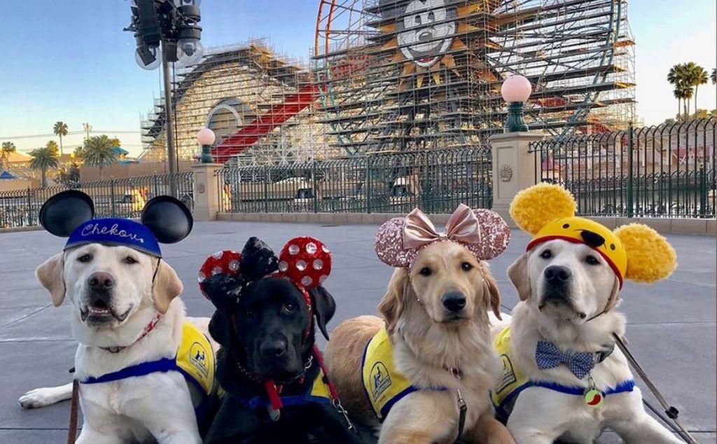 Se disfrazaron de los personajes animados de Disney. <strong>Foto:</strong> Fox News