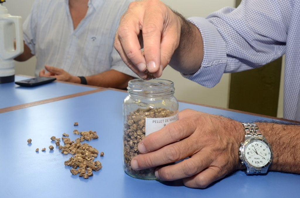 VENTAJAS. Lo novedoso del sistema ideado en la Facultad Regional Venado Tuerto de la UTN es que se ideó un pellets que reduce entre siete y diez veces el volumen del marlo.  TRANSMEDIA VT