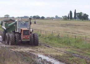Las condiciones climáticas deterioran la calidad y cantidad de lo que aún resta cosechar