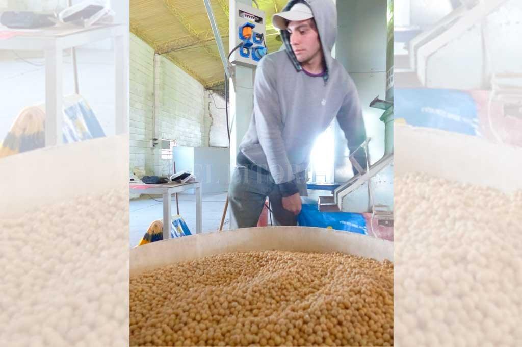 La sequía impactó en la producción agropecuaria. Hasta fue necesario importar soja para aprovechar la capacidad instalada de las procesadoras. <strong>Foto:</strong> Archivo El Litoral