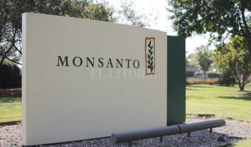 Bayer absorbe a Monsanto